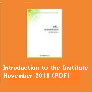 Introduction to the Institute November 2018 (PDF)