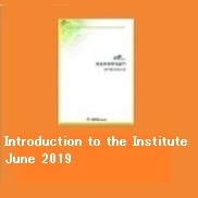 Introduction to the Institute June 2019 (PDF)